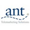 Ant Marketing